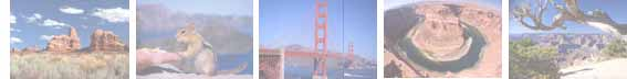 picture of the week bar