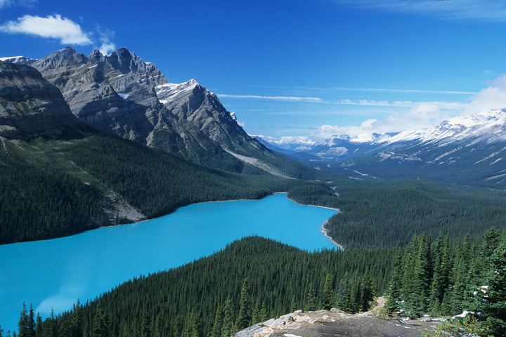Peyto Lake, Banff N.P. / CAN