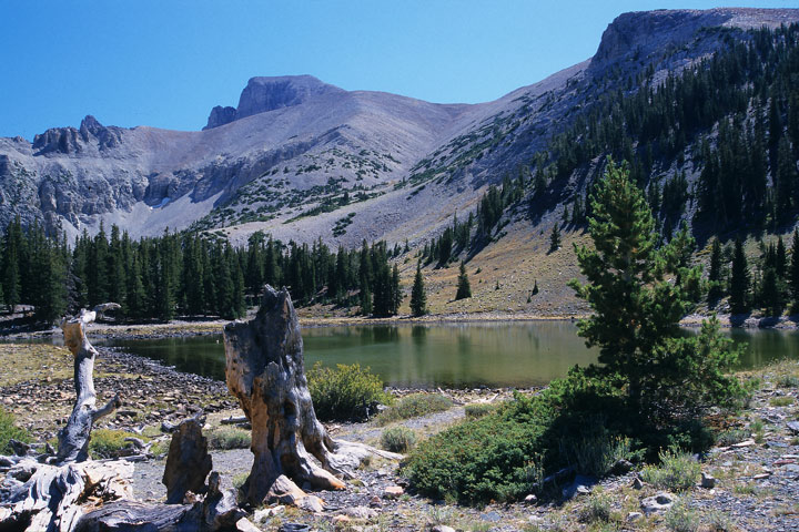 Stella Lake, Great Basin N.P. / NV