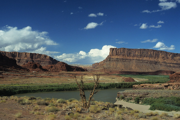Colorado River bei Potash / UT