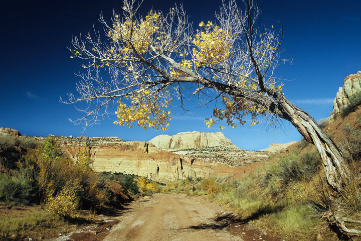 Pleasant Creek Road, Capitol Reef N.P. / UT